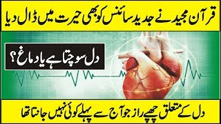 Does The Heart Has Thinking Power ( Quran And Science ) In Urdu Hindi