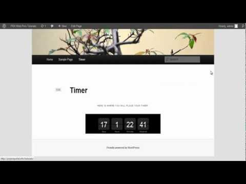 Add A Timer To Your Wordpress Page