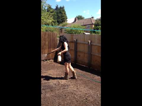 How to lay grass seed cow girl style