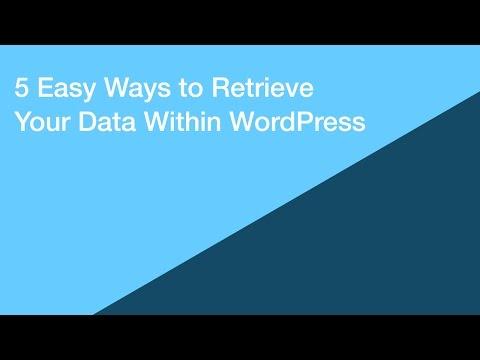 5 Easy Ways to Retrieve Your Data Within WordPress