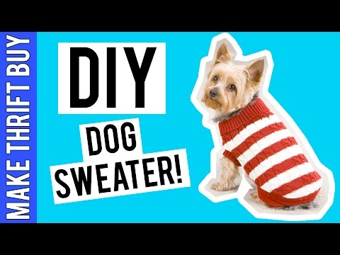 DIY DOG SWEATER! | Make Thrift Buy #41