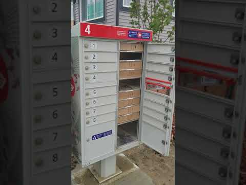 CanadaPost Leaves Community Box Open- Packed Lose