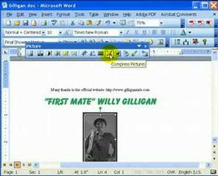 Word 2003 Picture Editor
