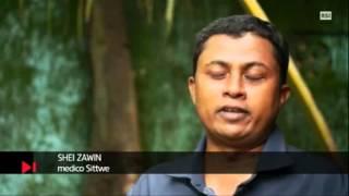 Genocidio dei musulmani in Myanmar (Birmania). TG del 14.11.2014