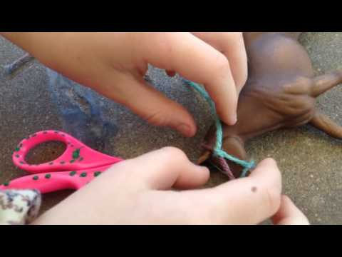 DIY How to make a horse halter