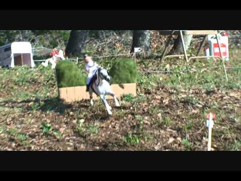 2012 Breyer Olympic Games event nuber one //Cross country// (part 2)
