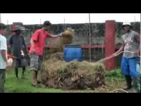 Part 1 Composting the fast and easy way in English and Tagalog