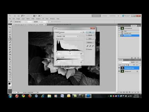 Photoshop CS4/CS5: How To Make A Black & White Image With Some Color
