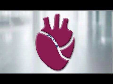 Heart Disease & Estrogen HD