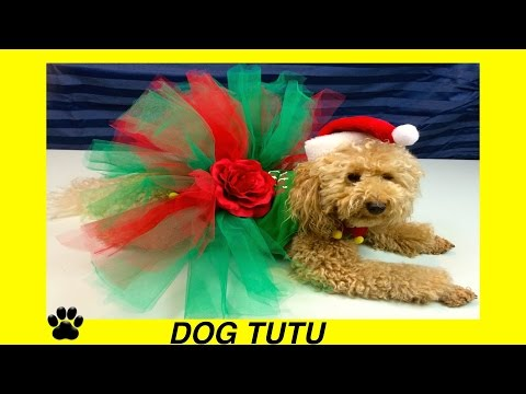 How to make CHRISTMAS DOG TUTU SKIRT- XMAS FESTIVE DRESS - DIY Dog Craft by Cooking For Dogs