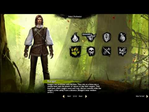 Guild Wars 2 - Human Male Profession Gear Sets