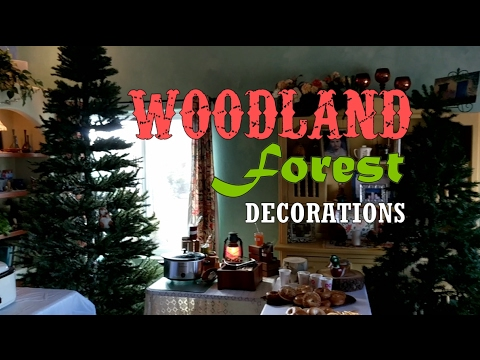 Woodland Adventure Themed Party Decoration Ideas