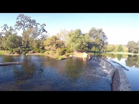 Fishing Bluegills at Serrano Pond
