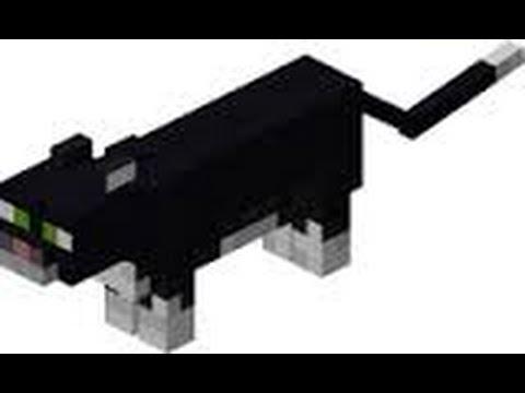 Comment Apprivoiser un Ocelot minecraft-Tuto