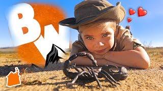 Download Mini Coyote Peterson Explores the Wild! Video