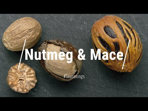 All About Nutmeg & Mace || Le Gourmet TV Recipes