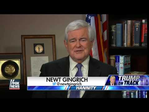 Newt Gingrich: 'Donald Trump is president, not some cabal'