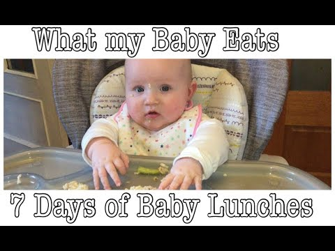 WHAT MY BABY EATS FOR LUNCH | 7 DAYS OF BABY LUNCHES | STAGE 2 - 7 MONTH PLUS
