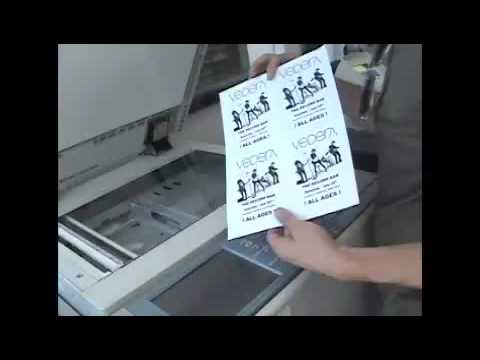 Vedera-Making flyers