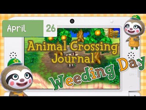 Animal Crossing Journal | New Leaf | Happy Generosity!