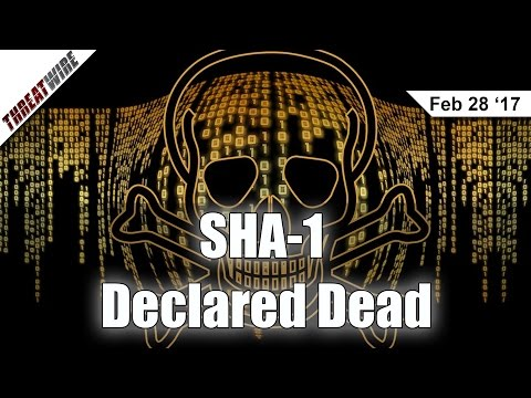 SHA-1 is Officially Dead and What is CloudBleed? - Threat Wire