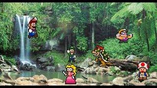 Mario and Luigi Summer Madness