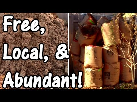Building Garden Soil with Free, Local, and Abundant Resources
