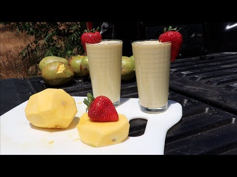 How not to make a mango smoothie