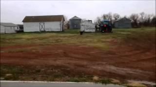 Epic Battle: Farm Dog Rolls Farm Cat