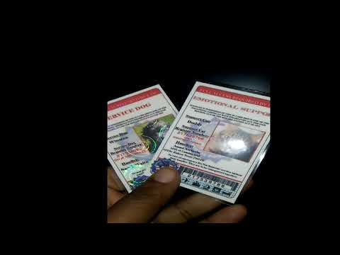 Service Dog ID Cards Hologram, Laminate &  PVC ID Cards