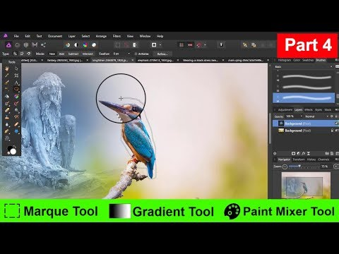 Affinity Photo Marquee , Gradient , Paint Brush Tool, Free hand selection || Beginner Guide 4