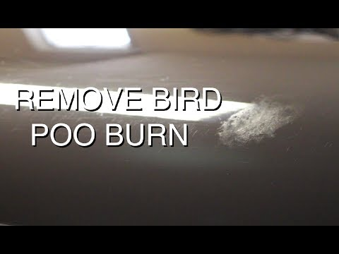 DIY: Wet-Sand Bird Poo Stain from Black Paint