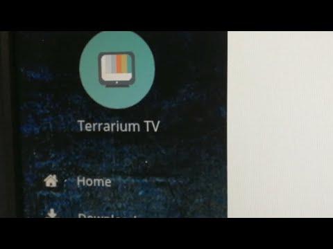 What is Terrarium TV
