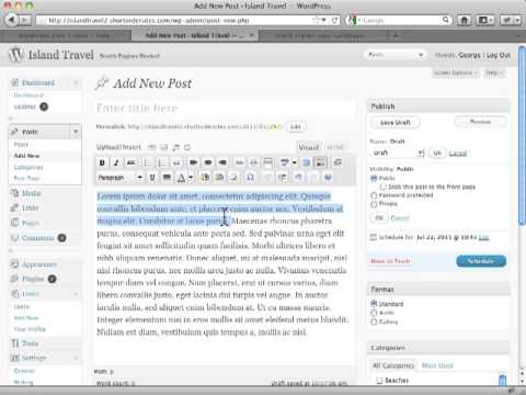 Basic Concepts in Text Editor WordPress Tutorial