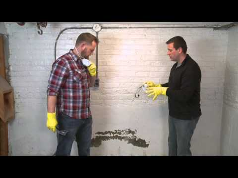How to Clean up Mold