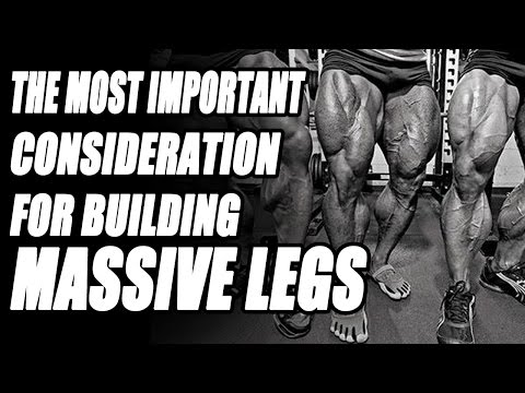 The Most Important Consideration for Building Massive Legs