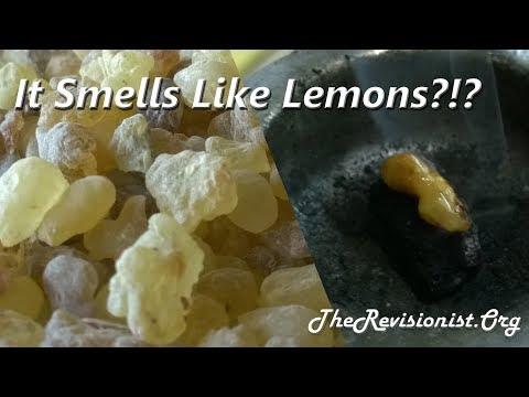 Boswellia Carterii Frankincense Taste Test & Scent Profile