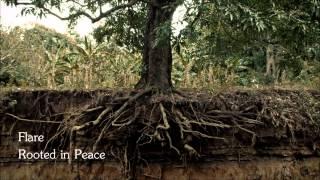 Flare  Rooted In Peace  Herz Ber Kopf Ber Herz By Louis