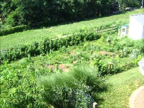 Episode 86 The Food Production Podcast Part 9 Permaculture Design