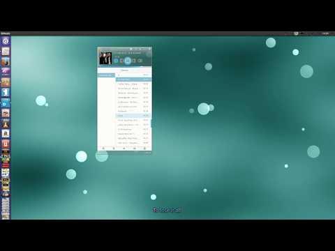 Deepin audio player on ubuntu 13.04