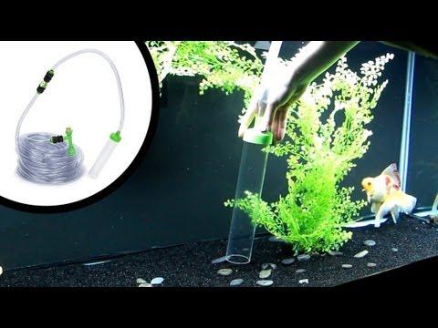 How To Clean Sand Aquarium Substrate