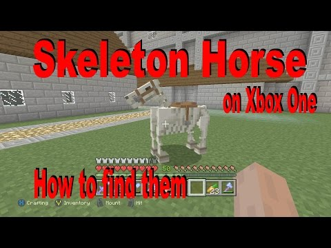 Minecraft - How To Get A Skeleton Horse In Survival