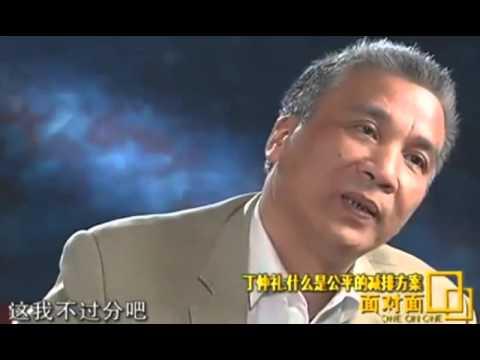 丁仲礼院士质问柴静: 中国人是不是人?