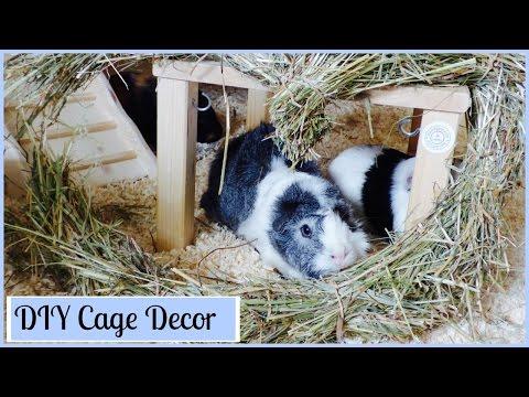 Guinea Pig DIY Cage Decor