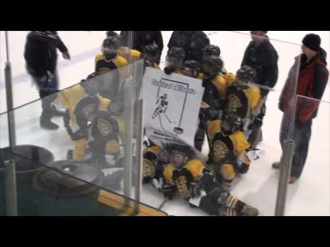 Carstairs Bruins - CAHL Atom Tier 5 Champions -  Banner presentation