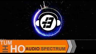TUM HI HO REMIX (Audio Spectrum Edited)