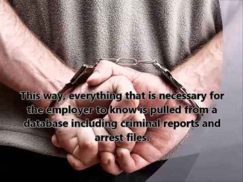 Importance of Pre-employment Criminal Background Check