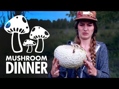 Hunting WILD Mushrooms | Foraging the Giant Puffball Mushroom