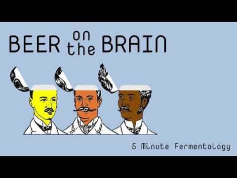 Beer on the Brain (BotB) - Intro
