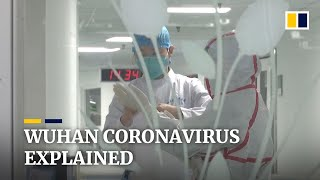 What we know about China's mystery Wuhan coronavirus